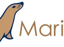 CentOS MariaDB 소스 설치하기